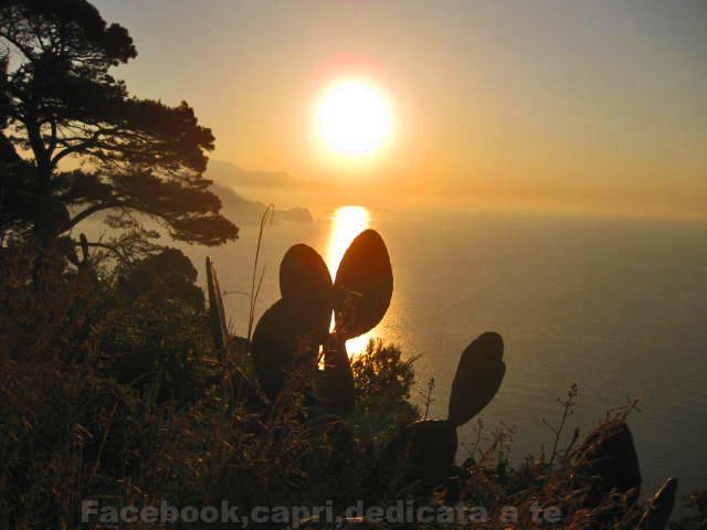 Capri, ritorna il grande caldo temperaure sopra i 30 gradi