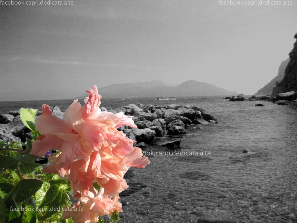 Vacanze settembre a Capri