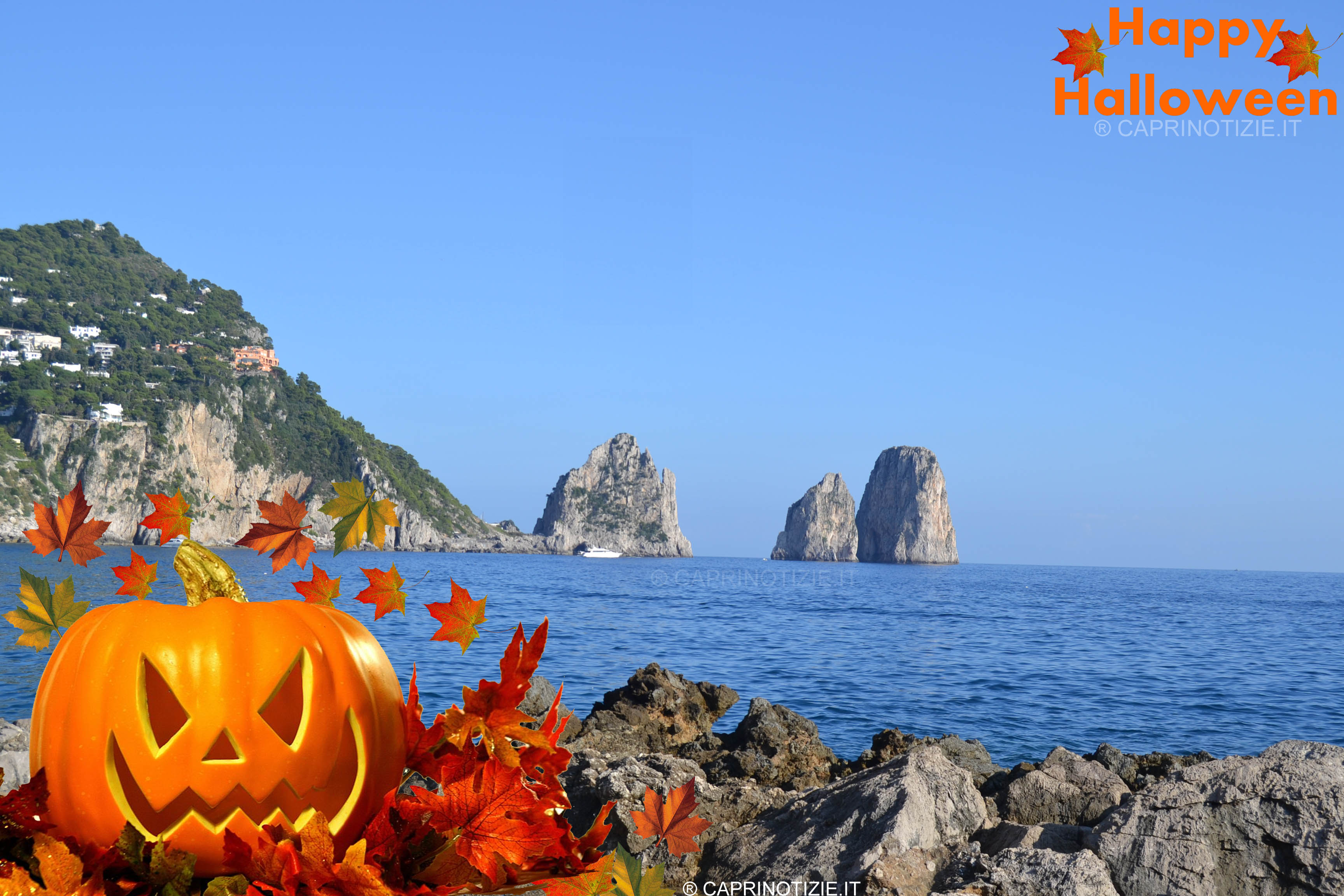 Capri E Halloween Foto Art Sfondo Per Pc Wallpaper