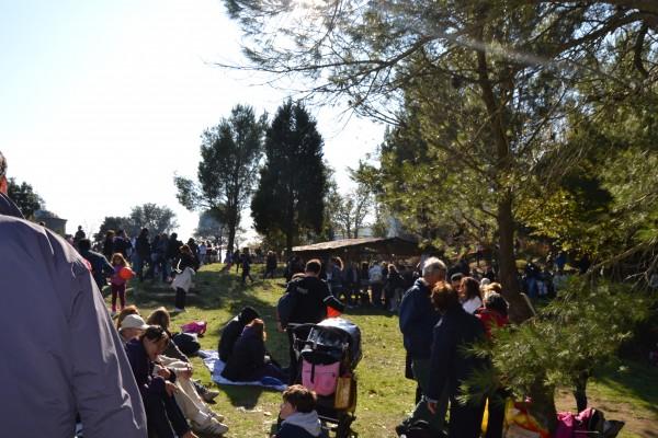 festa castagna cetrella