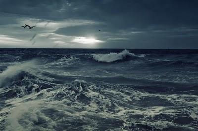 Il mare in tempesta ha sempre affascinato poeti e pittori, se poi lo ...
