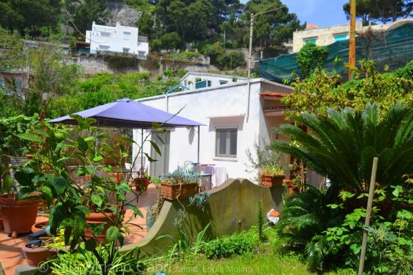 villa striano casa vacanze capri
