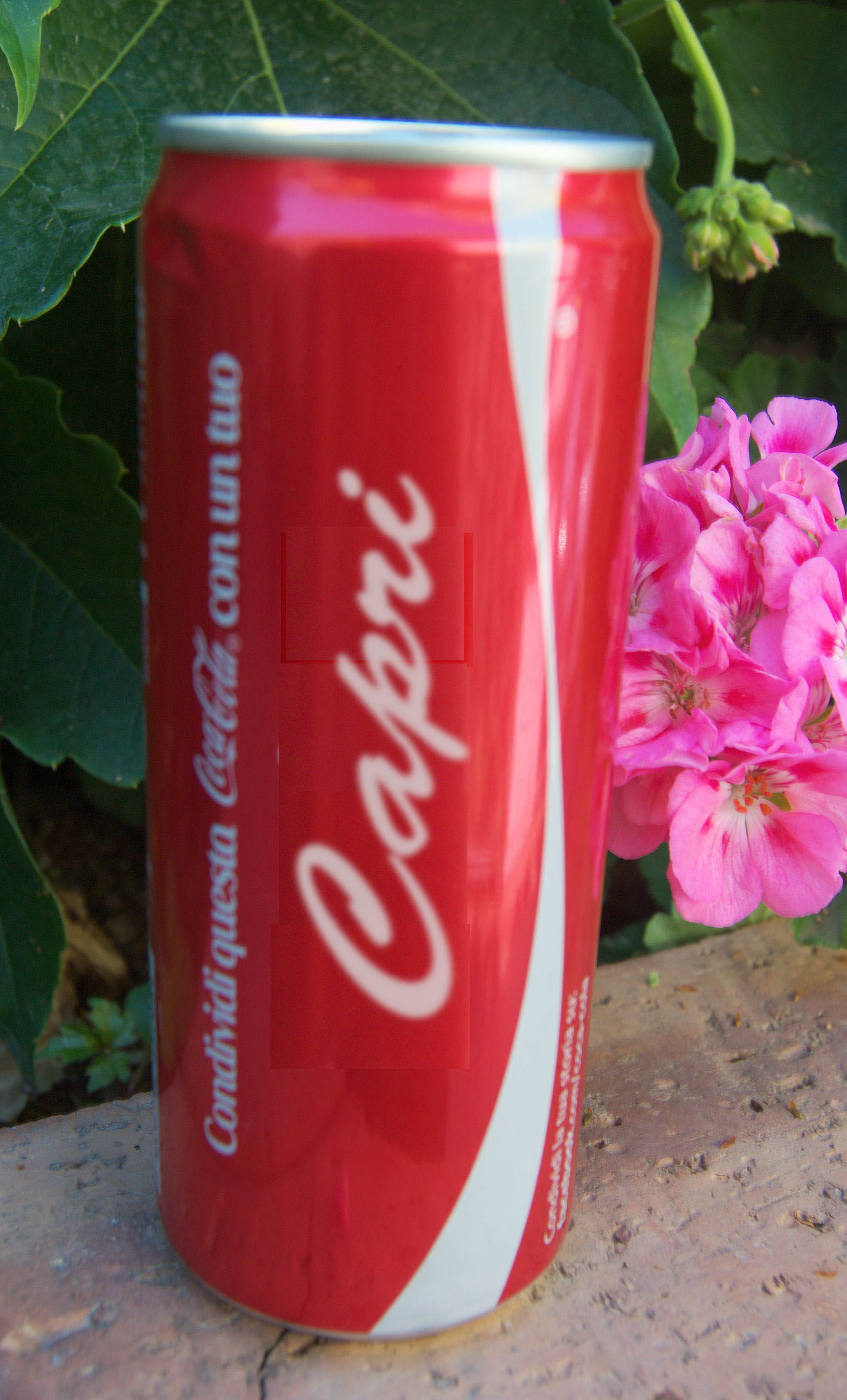"""La Coca Cola con l'etichetta """"Capri"""" ?"""