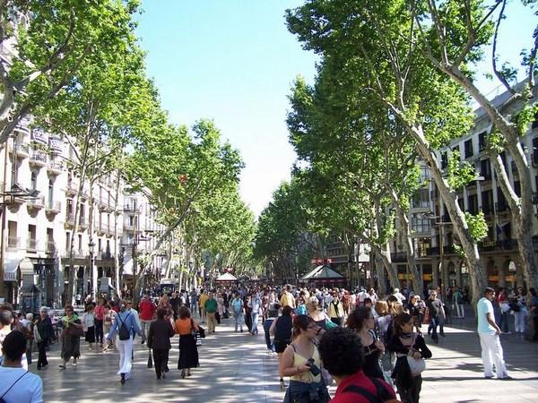 Le Caprigo' energy drink al Barmelindo di Barcellona