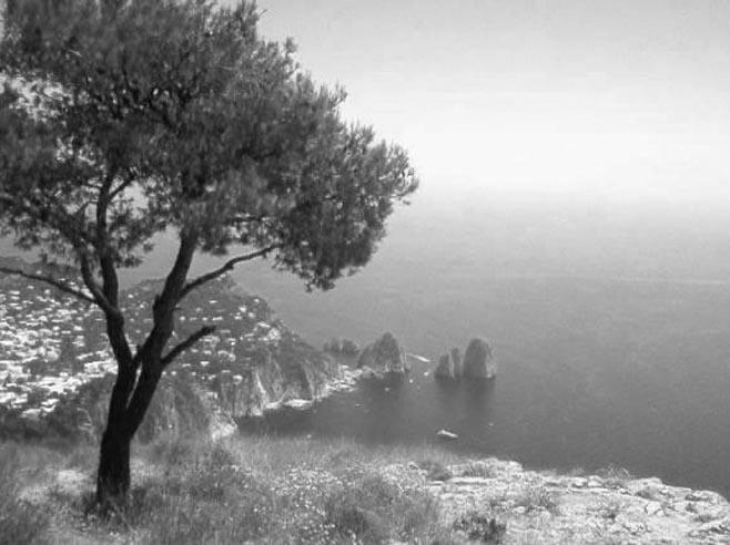 Il vecchio mulino a vento di Anacapri (video e foto)