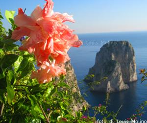 Hotel b&b Capri case vacanze capodanno natale
