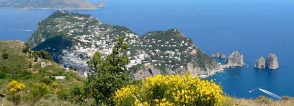 Cerchi casa a Capri ?  10 affari da non perdere