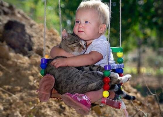 """Al via il concorso fotografico di beneficenza dedicato all' amicizia uomo-animale """"Noi amici per la Vita"""""""