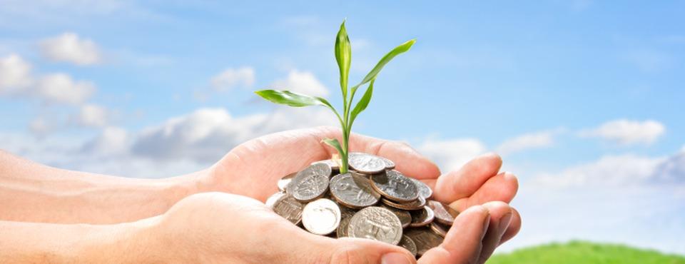 Come cercare assicurazioni online economiche