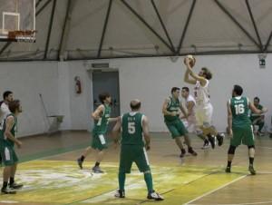 olimpia basket