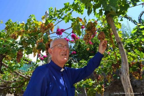 don vincenzo uva 5