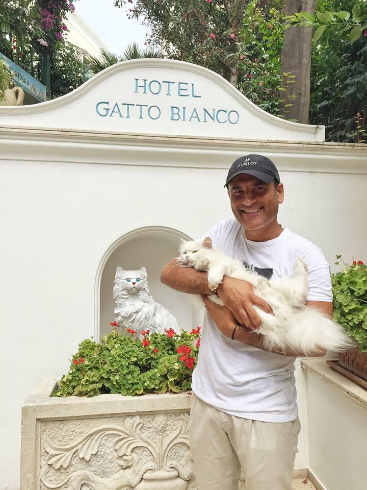 """Sal Da Vinci in vacanza a Capri, selfie con Giorgio Panariello e """"Matisse"""" la mascotte dell' Hotel Gatto Bianco"""