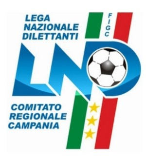 4 giovani Calciatori Capresi al raduno della Rappresentativa regionale Giovanissimi calcio a 5