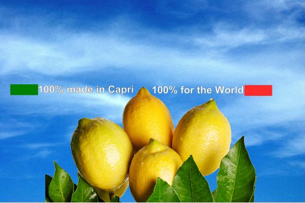 Nasce Publicapri , Marketing e Pubblicità per le attività di Capri