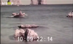 Capri nel 1930, Video Inedito di un' isola da sempre Magica