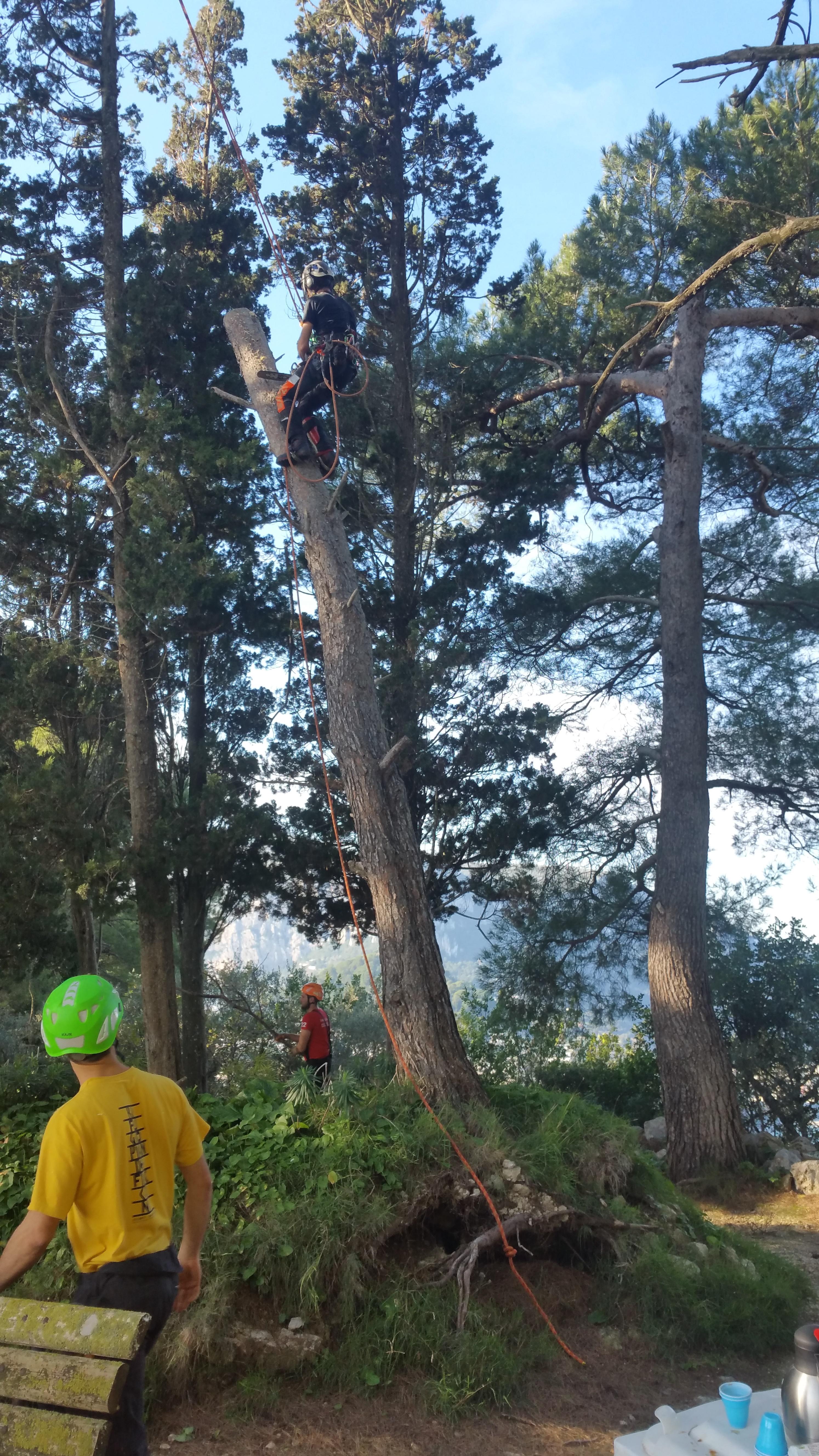 Capri: Completato il primo intervento di restyling a Parco Astarita, le dichiarazioni del delegato Fabio de Gregorio