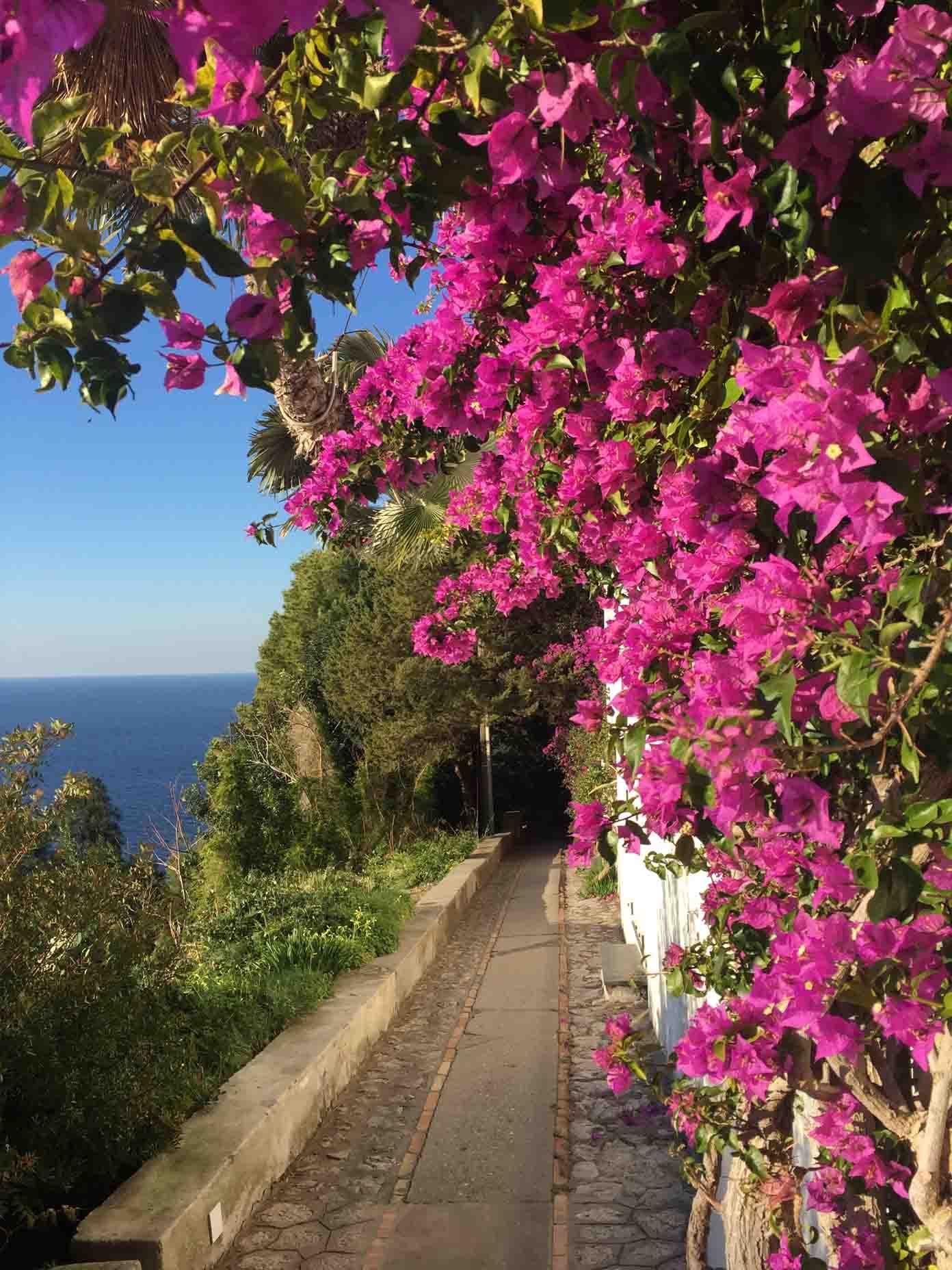 Vacanze di Primavera a Capri, Hotel e Bed and breakfast aperti