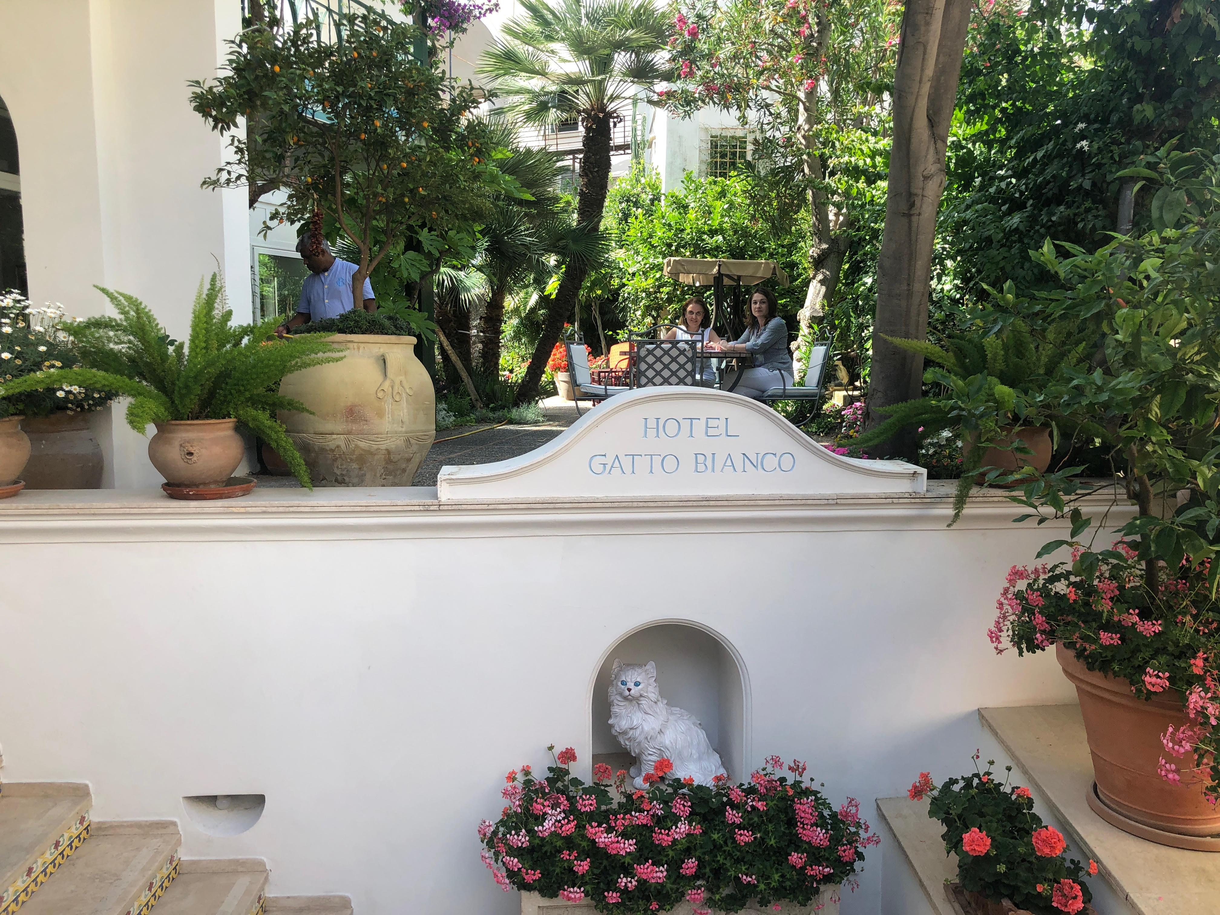 Capri. Ricercatrice americana completa l'indice dei lavori del noto artista americano Charles Caryl Coleman