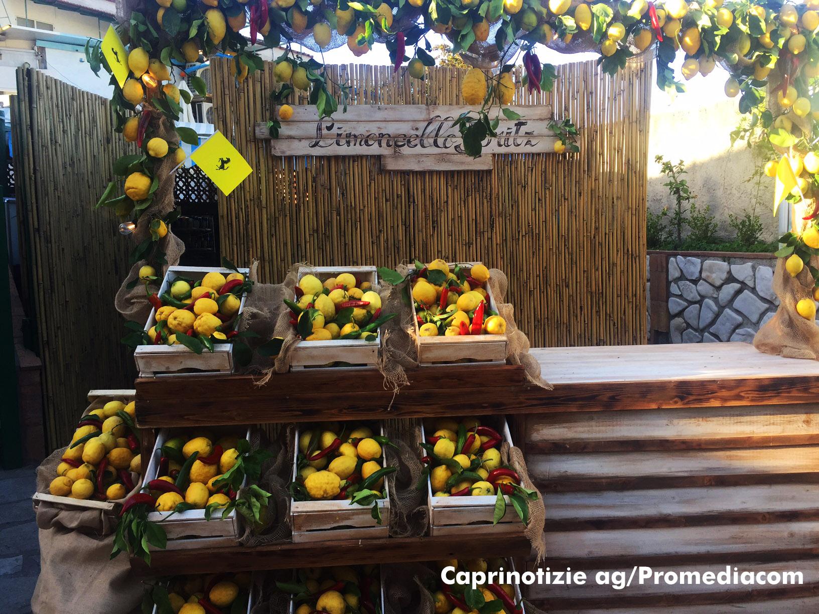 Le Ferrari a Capri:  Tutto pronto a Palazzo a Mare per l'evento ospitato dal Ristorante da Paolino (FOTO)