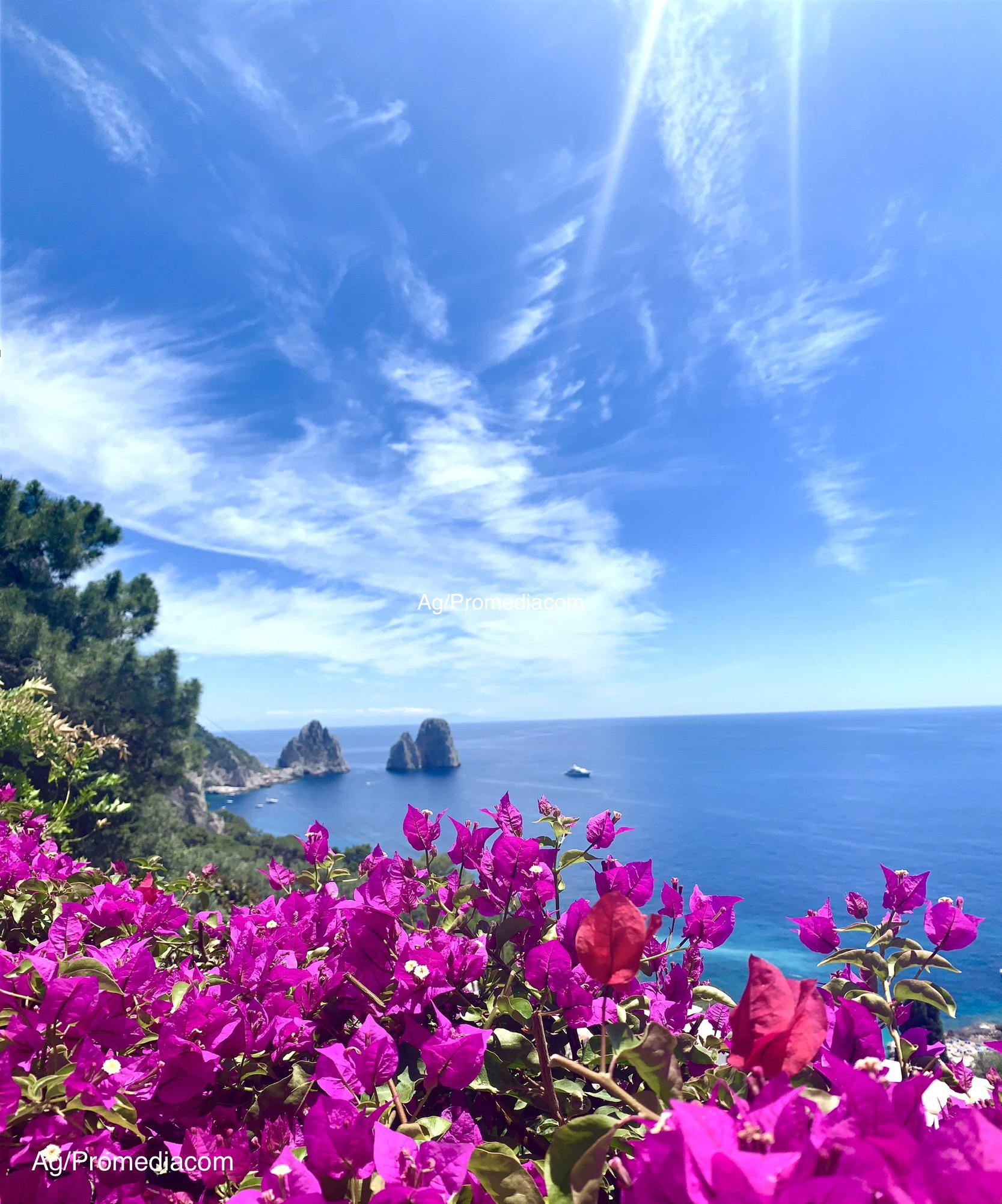 """Capri. I Faraglioni """"abbracciati"""" dalle Bouganvillea, la foto é una Cartolina"""